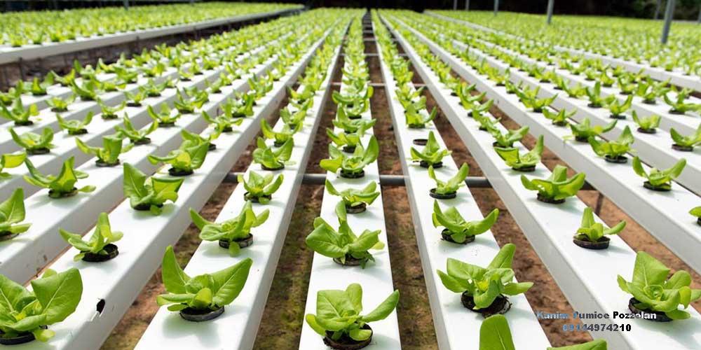 مقاله مصرف پومیس پوزولانی در کشاورزی